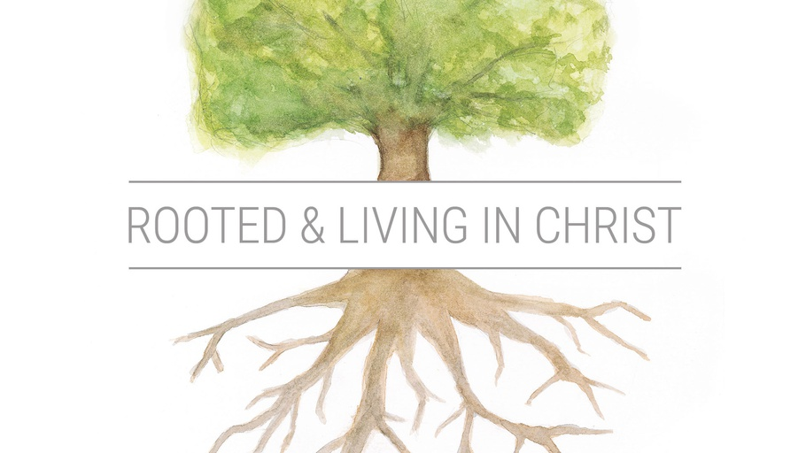 Discipleship: Rooted and Living in Christ